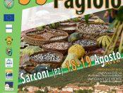 SAGRA-DEL-FAGIOLO-SARCONI-2016
